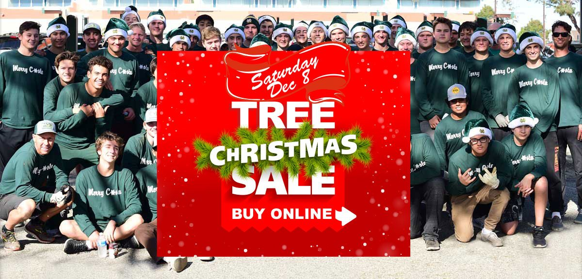 Christmas Tree Sale 12/8